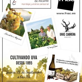 Fnac y Cata de Vinos Alicante